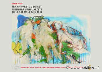 Angle d'art. Jean-Yves Guionet. Angle d'art jeudi 20 mai 2021 - Unidivers