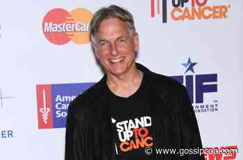 Mark Harmon Net Worth 2021: His 'NCIS' Salary Is More Than You Think - Gossip Cop