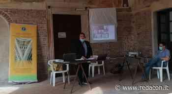 Matilde di Canossa: l'assemblea annuale della Associazione Matildica Internazionale - Redacon