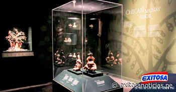 Museo Larco reabre exposición de su valiosa colección Moche - exitosanoticias