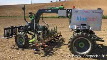 Escalquens : Naïo Technologies exporte des robots de désherbage - ladepeche.fr