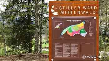 Erster Alpen-Naturfriedhof bei Mittenwald eröffnet - BR24