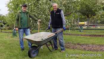 Alte Bauernregel bewahrheitet sich - op-online.de