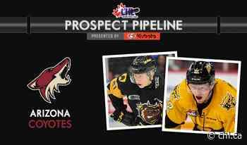 CHL Prospect Pipeline – Arizona Coyotes – CHL - Canadian Hockey League