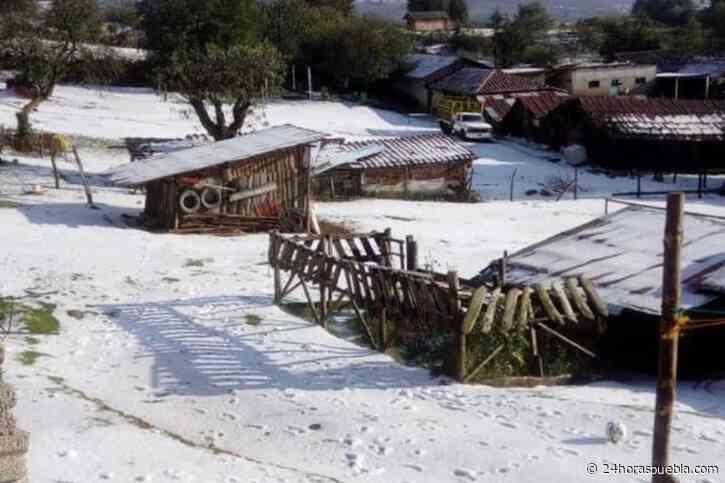 Granizada causa afectaciones en comunidad de Chignahuapan - 24 Horas El Diario Sin Límites Puebla