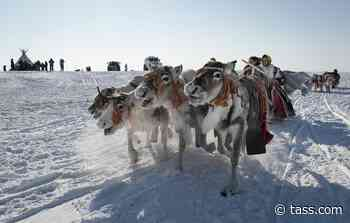 Two ethnic villages in northern Krasnoyarsk Region due by November - TASS