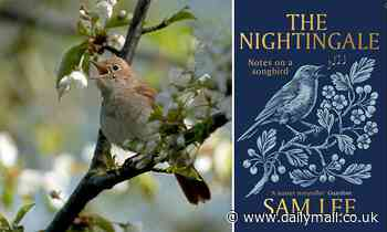 The little bird with very large songbook: A delightful miscellany of nightingale fact and fiction
