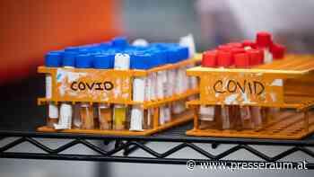 New Brunswick meldet am Donnerstag sieben neue Fälle von COVID-19; 117 aktive Infektionen bleiben bestehen - presseraum.at