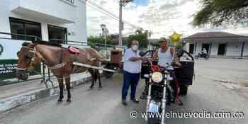 ¡Armero le dice no al maltrato animal! Es el primer municipio del Tolima en sustituir 'carretillas' por vehículos - El Nuevo Dia (Colombia)
