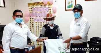 Entregan en Aguachica, Cesar, los primeros kits de prevención contra el Fusarium R4T - Agronegocios