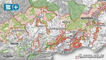 Vogelschutzgebiet Brilon-Marsberg: Nach Gezänk nun Gespräche - Westfalenpost