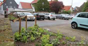 Mehr Parkplätze für die Altstadt Horn | Lokale Nachrichten aus Horn-Bad Meinberg - Lippische Landes-Zeitung