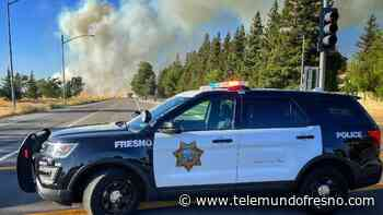 Bomberos combaten voraz incendio cerca de Woodward Park - Telemundo Fresno
