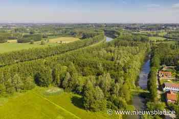 """Provincie koopt 25 hectare natuurgebied aan in Scheldevallei: """"Hopen op een comeback van de bever en de otter"""""""