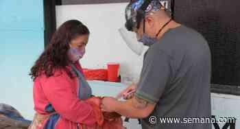 En Chipaque, Cundinamarca, todos los perros y gatos tendrán cédula - Semana