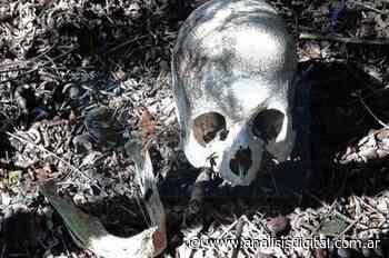 Villaguay: encontraron un cráneo en un camino de tierra   Análisis - Análisis Digital