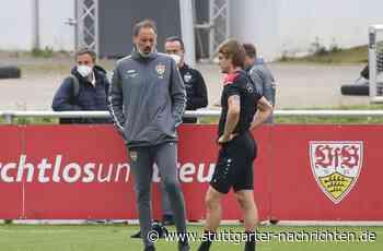 Pellegrino Matarazzo vom VfB Stuttgart - Das sagt der Trainer zur Causa Borna Sosa - Stuttgarter Nachrichten