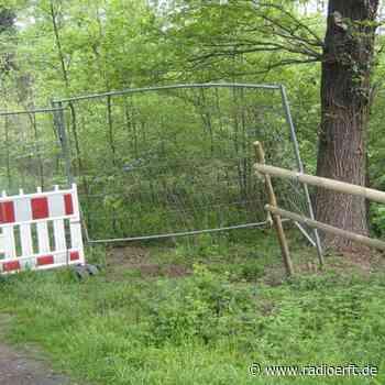 Elsdorf: Besucher räumen Absperrung im Wald einfach weg - radioerft.de