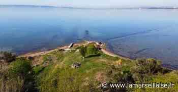 Un petit air de nature sur l'ancien port de Rognac - Journal La Marseillaise