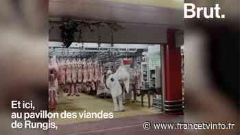 VIDEO. Pendant ce temps-là, à Rungis, Caroline s'adapte aux réouvertures des terrasses - Franceinfo