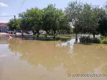 Desborde de laguito en Arboledas afecta al comercio - EnLíneaDirecta.info