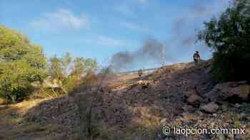 Alarma por incendio de pasto seco en arboledas - La Opcion