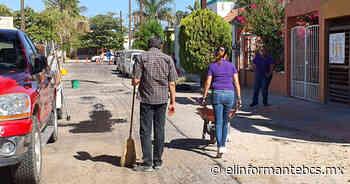 Realiza Marcela Neuenschwander jornada de bacheo en la colonia Arboledas - El Informante Baja California Sur