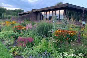 In beeld: Inspiratie voor uw tuin in de bijentuin van Damme