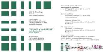 Venice Gardens Foundation   ECHOES OF THE FOREST   Maria Thereza Alves e Jimmie Durham   Giardini Reali di Venezia - Controluce Notizia