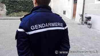 Seynod : une femme attaquée au couteau par son mari devant ses enfants - lessorsavoyard.fr