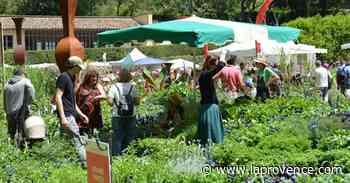 Bouc-Bel-Air : les journées des plantes d'Albertas, c'est pour bientôt ! - La Provence