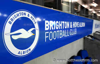 Brighton and Hove Albion hold talks with Hibs over strategic partnership - Not The Old Firm - SPFL News