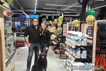 Tom&Co opent in Kontich 130ste filiaal met labrador Tajo als mascotte - Het Nieuwsblad