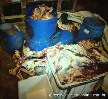 Polícia Ambiental de Lavras apreende carne sem inspeção sanitária que seria encaminhada ao consumo humano - Varginha Online
