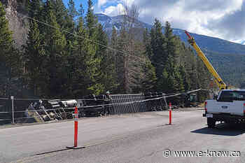 Cattle liner crashes east of Sparwood   Elk Valley, Sparwood Cattle liner crashes east of Sparwood e - E-Know.ca