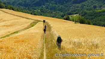 Cammino del Santo fino a Gemona - il mattino di Padova