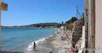 La Ciotat : la mairie tanque la plage canine dans les rochers - Journal La Marseillaise