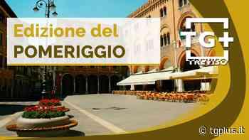 Grandinata su Asolo, danni fino all'80% – TG Plus NEWS Treviso - Tg Plus