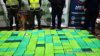 Incautan 300 kilos de cocaína en el puerto de Santa Marta - EL HERALDO
