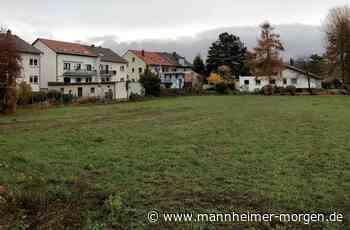 Knappes Ja zum Baugebiet am Siedlungsrand in Heddesheim - Heddesheim - Nachrichten und Informationen - Mannheimer Morgen