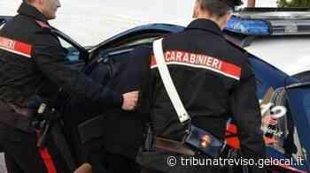 Giro di cocaina a Villorba, arrestato un 28enne - La Tribuna di Treviso