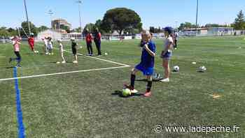Pibrac. Création d'une section foot féminine de 6 à 13 ans - LaDepeche.fr