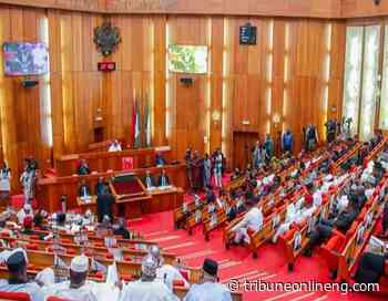 Senate orders FCE Okene to refund N242m into federation account - NIGERIAN TRIBUNE