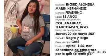 Desaparece mujer embarazada en Tlaxcoapan - Periódico AM