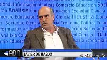 Pandemia y economía - Entrevista con Javier de Haedo, economista - VTV Noticias