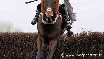 Frost and Cobden on mend after Aintree falls - Independent.ie