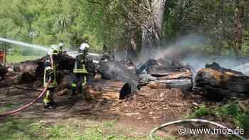 Feuerwehr: Brand am Ufer der Spree zwischen Neu Zittau und Erkner - moz.de
