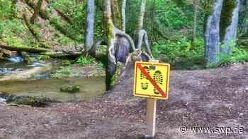 Wasserfall Bad Urach: Gesucht: Konzept gegen Massenandrang und Zerstörung - SWP