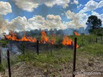 Bombeiros combatem incêndio em região de chácaras em Alta Floresta (MT) - G1