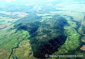 Alta Floresta do Oeste faz 35 anos, consolidando antigo fluxo migratório rumo ao Vale do Guaporé - Jornal Rondoniagora